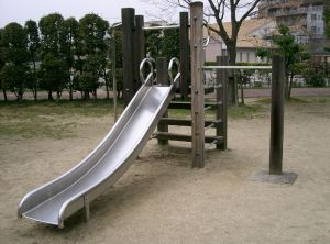 Not the actual slide