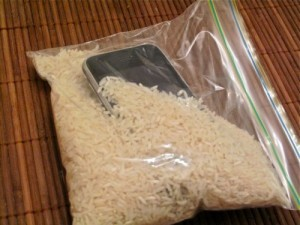 Cell in Rice